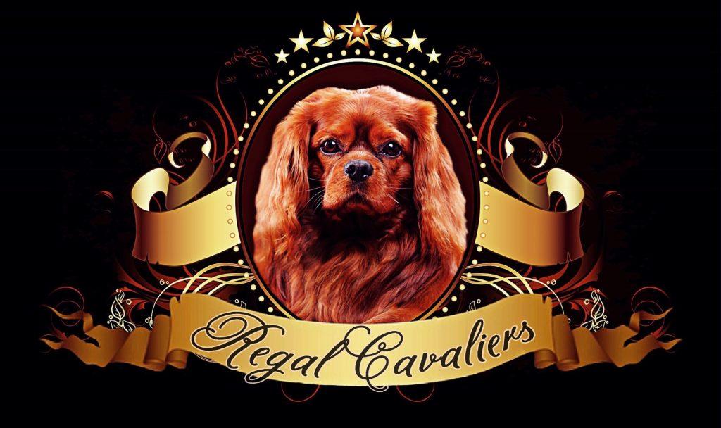 Regal Cavaliers_0082.jpg