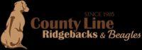 county line.JPG
