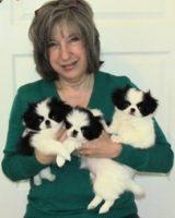 Jennifer and Zuki Lacey pups at 8 weeks.jpg