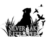 silverlake_logoV3-1-300x231.png