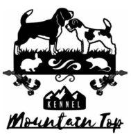 MOUNTAIN TOP.JPG